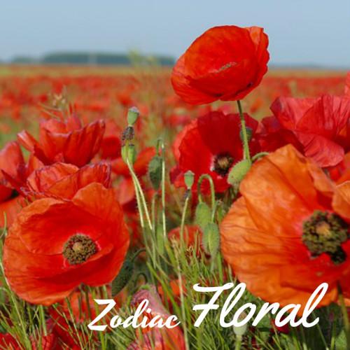 zodiac floral
