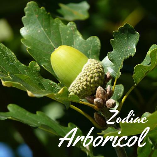 zodiac arboricol