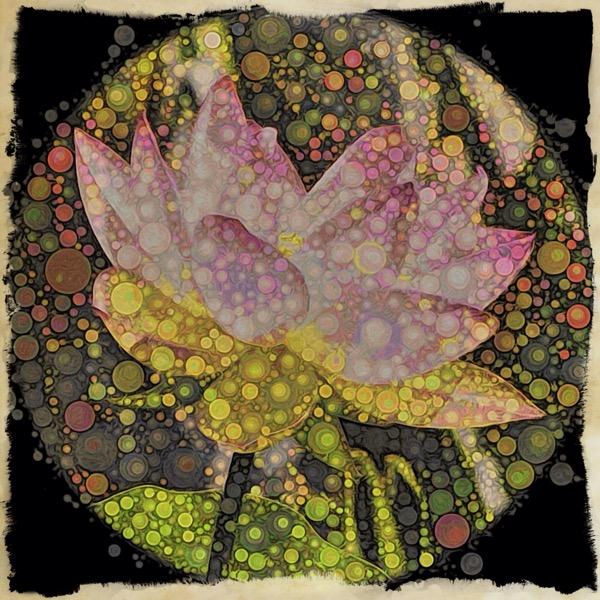 Effervescent Lotus