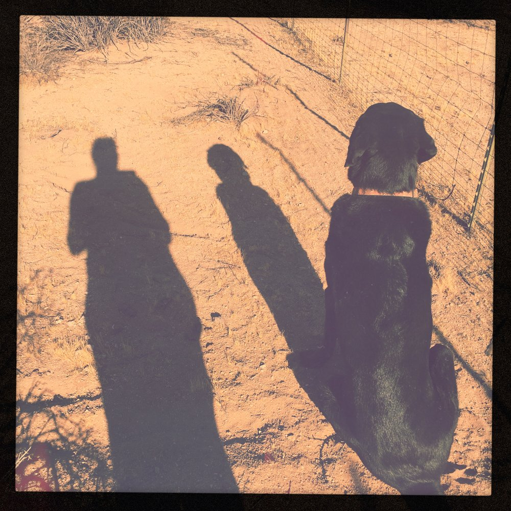 Me, And My Shadow
