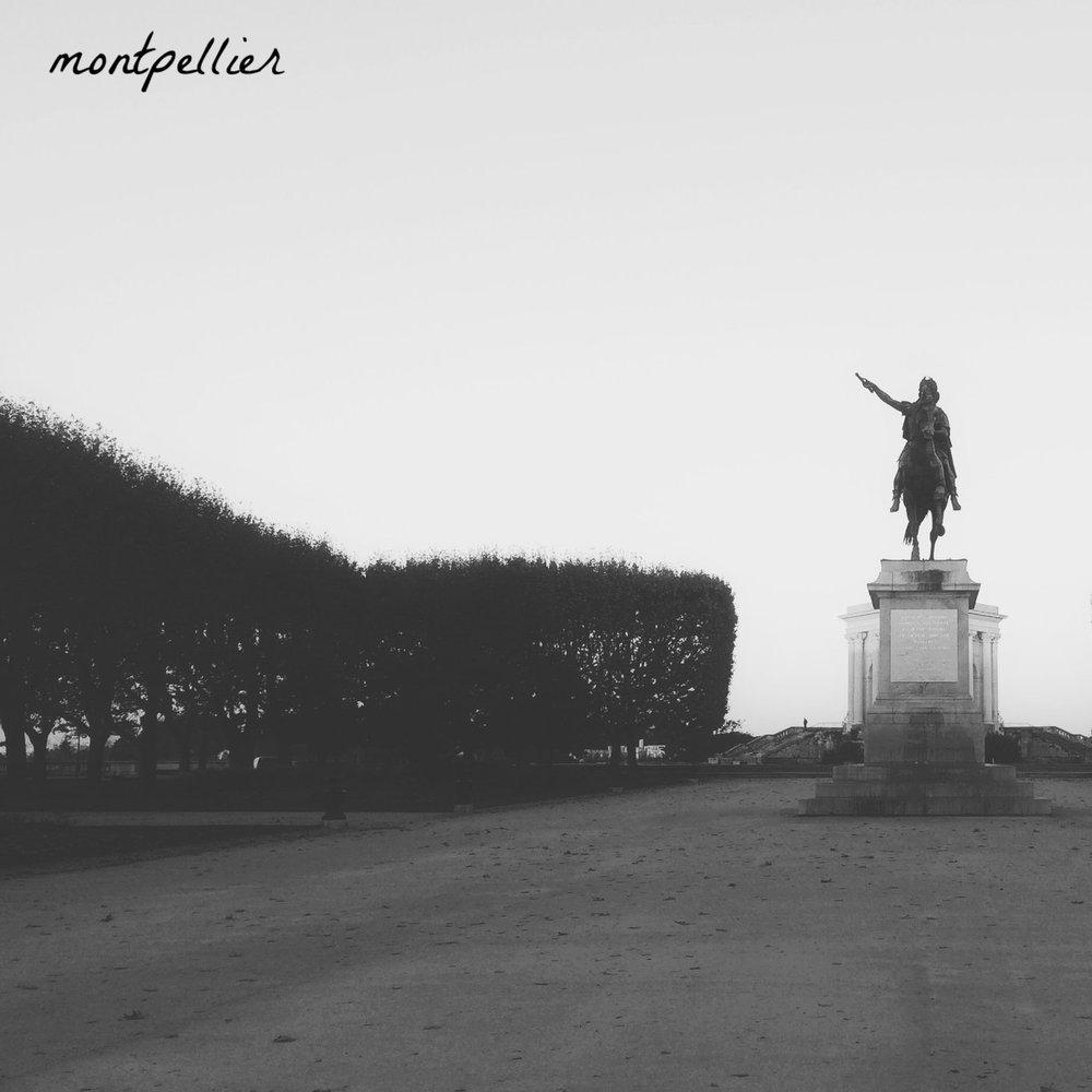 montpellier_home
