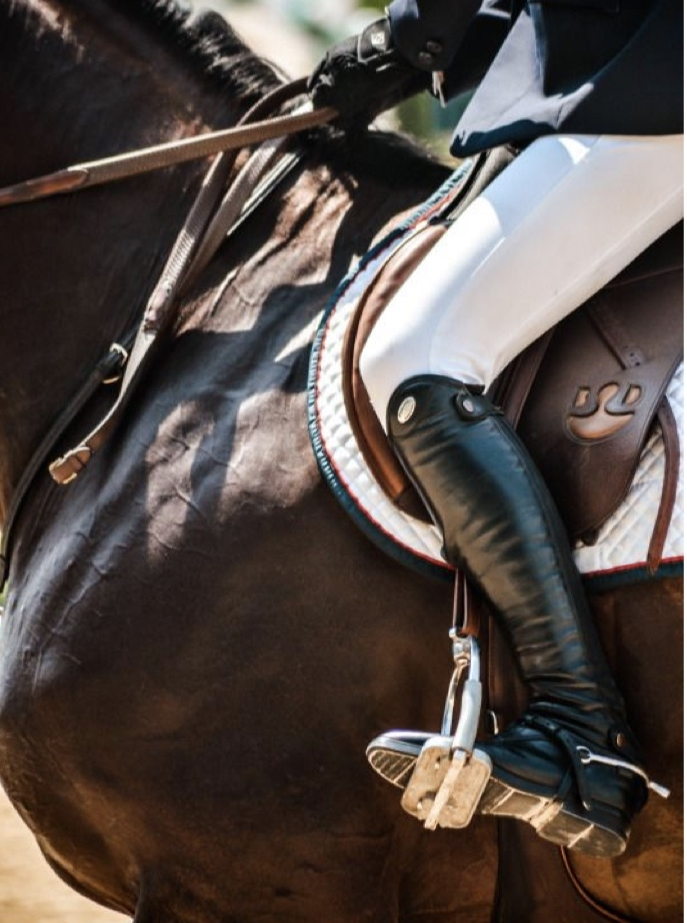 EQUESTRIAN COUTURE ON PINTEREST