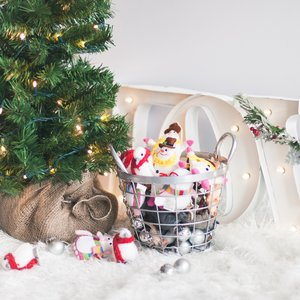 Holiday Mini-Sessions Markham