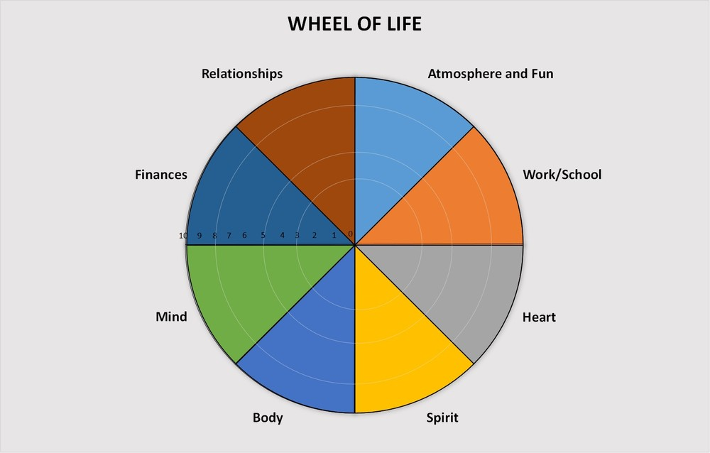 Wellness Wheel with Broad Categories.