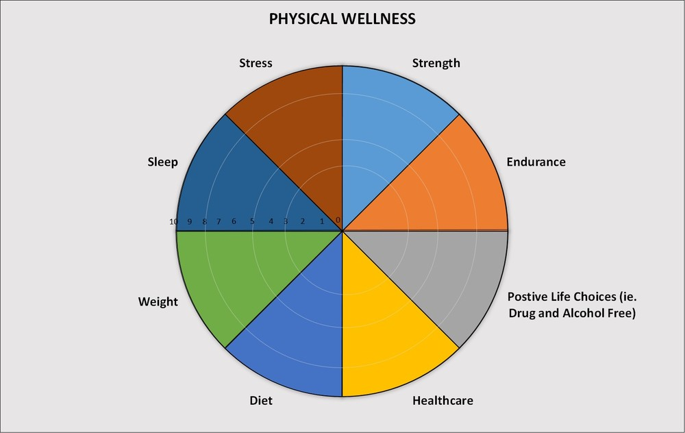 A Physical Wellness Wheel as an example of a more specific wheel