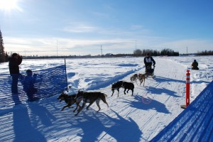 Thomas Henry of Huslia ran in the six dog classic of the Junior North American Sled Dog race in North Pole and placed second in 2013. Photo by Angela Gonzalez