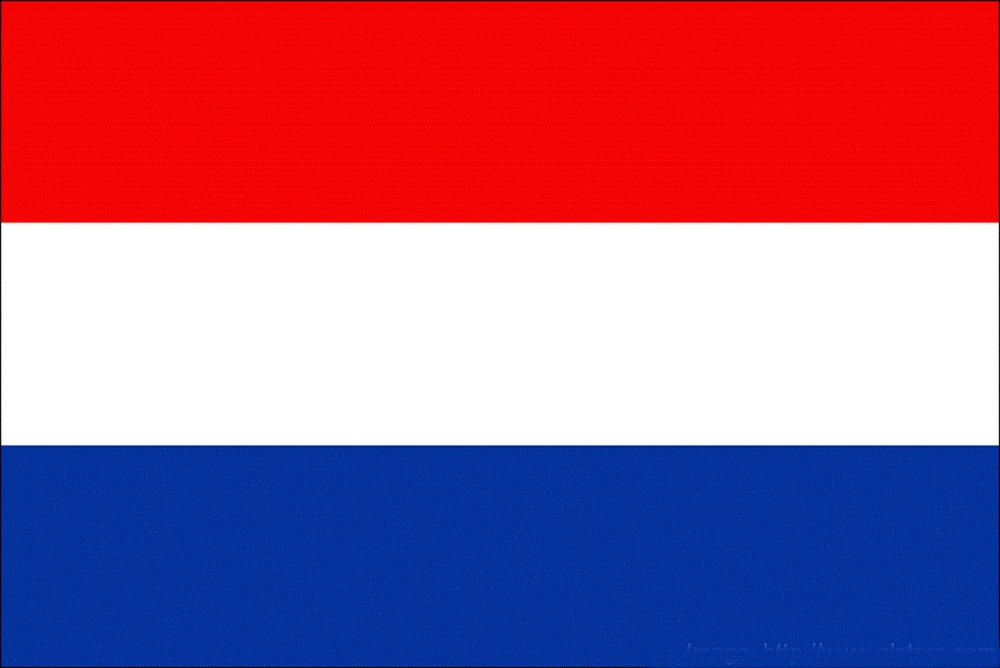 Netherlands-National-Football-Team-2014-WC10