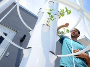 rooftop garden initiative in downtown Greenville SC