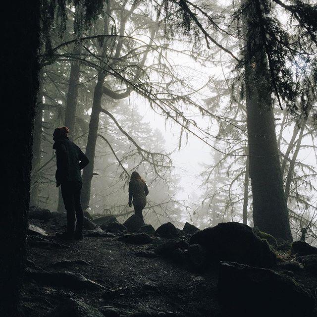 Fog Hunters.