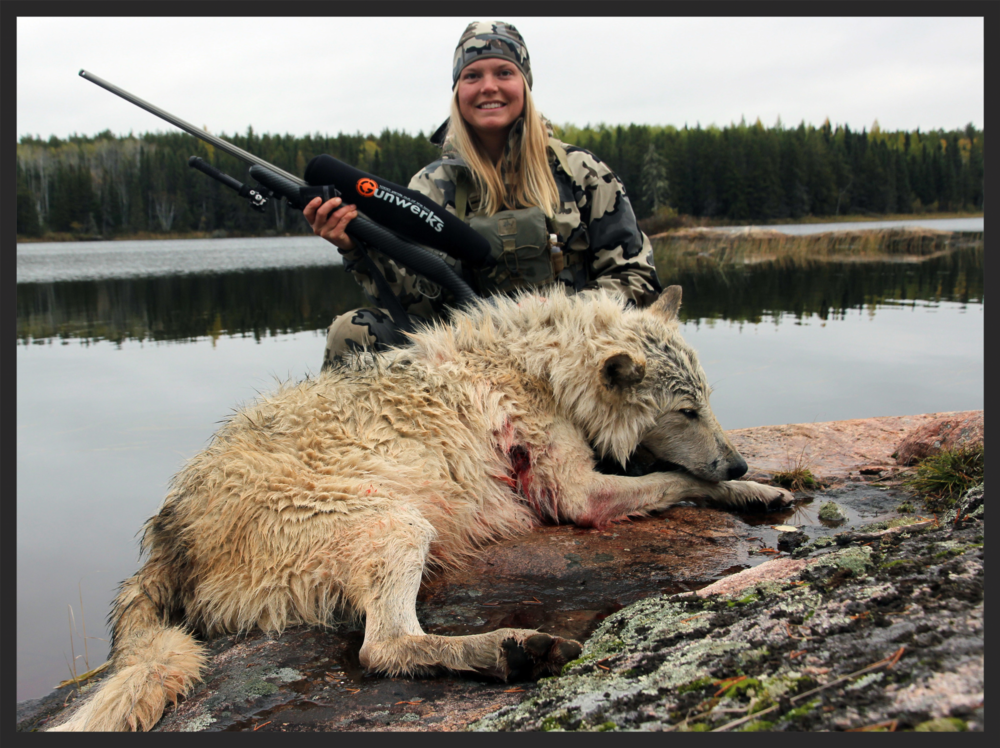 Every big game tag includes the option to shoot a wolf.
