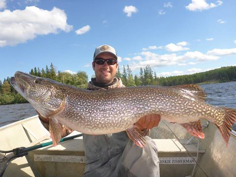 Manitoba Monster Master Angler Pike