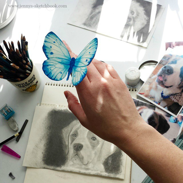 Pet Portrait in progress & Butterfly, by Jennifer Frith