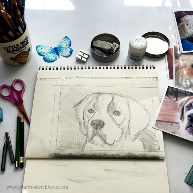 Pet Portrait in progress, by Jennifer Frith