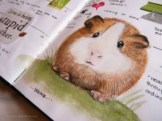 Guinea Pig - Watercolor Journal Pages