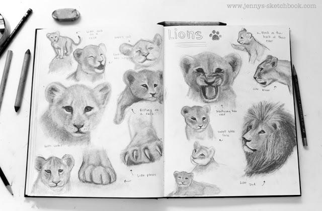 sketchbook pages by children's book illustrator, Jennifer Frith