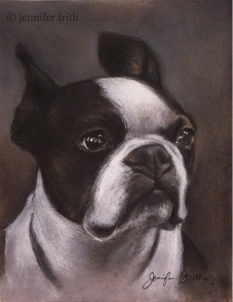 jenny-frith-charcoal-pet-portrait-2