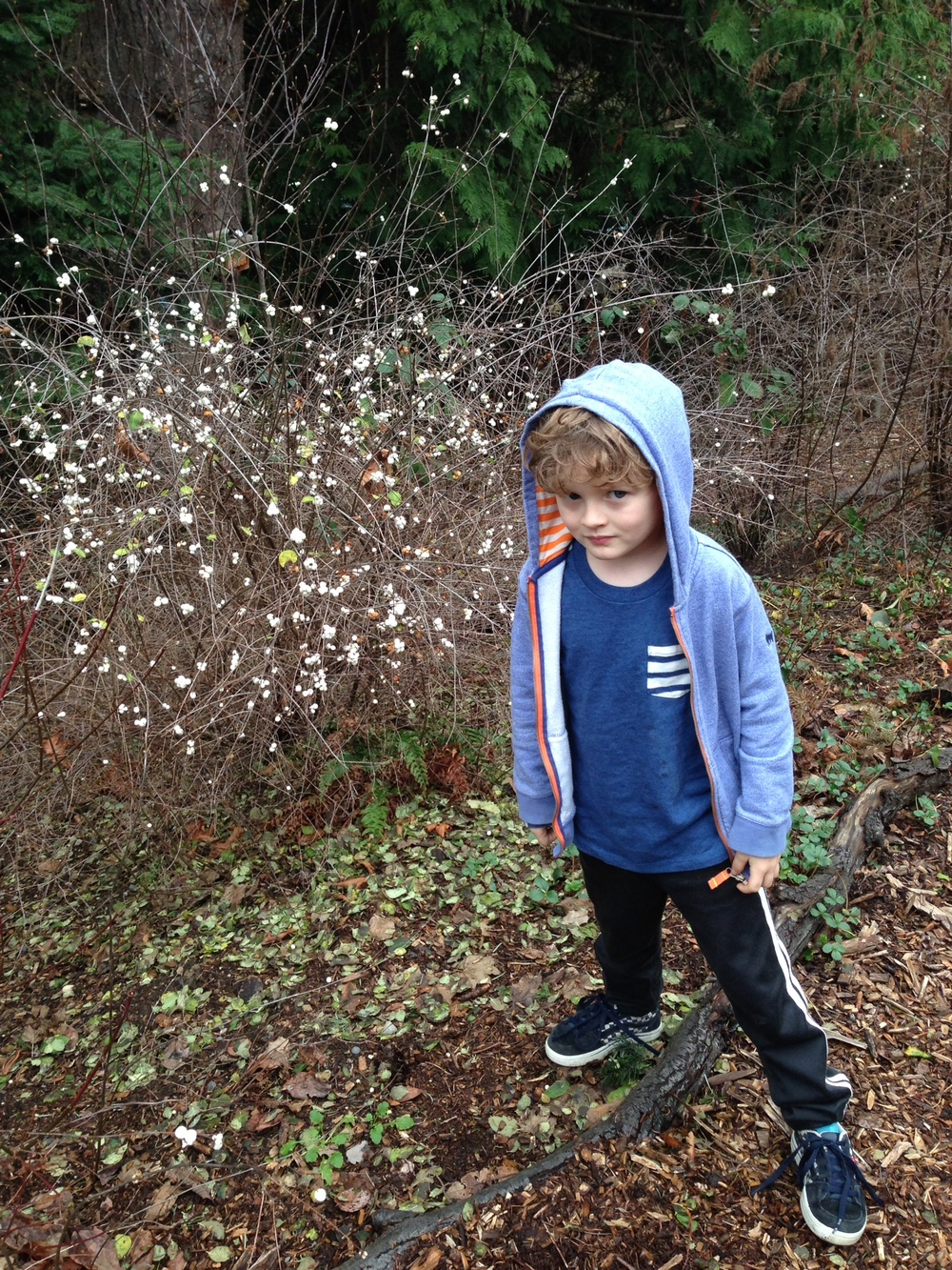 """Snowberries! A sign of winter!"" says my son."