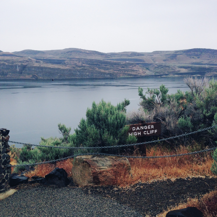 Ginkgo Petrified Forest State Park, our final stop on our birding day. Columbia river beyond.