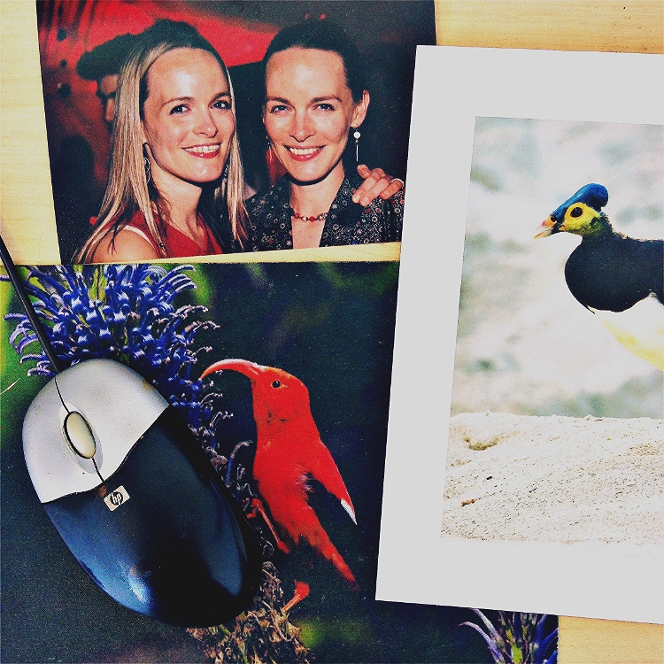 Clockwise from top: Photo of my sis Gilia and I; photo of a Maleo bird by Kevin Schafer; mouse pad featuring an I'iwi from Hawaii (an American Bird conservancy freebie).