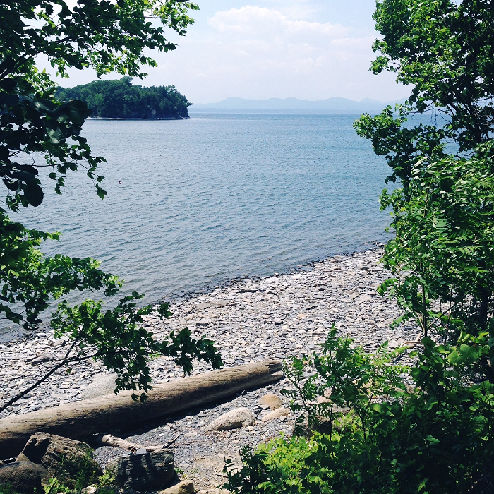 Lake shore of Champlain.