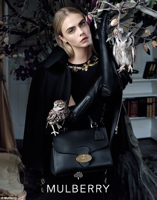 Mulberry F/W 2013 campaign featuring Cara Delevingne and a Little owl (L) and a White-faced Scops owl (R). Image: Tim Walker