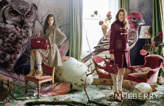 Mulberry F/W 2011. House finch and Great-horned owl in background. Image Tim Walker