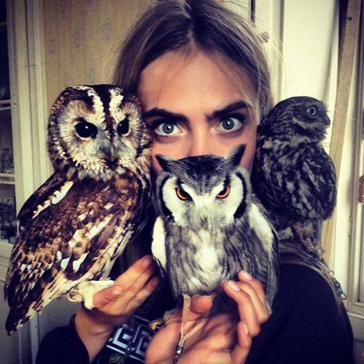 Cara Delevingne with some of the owls (L to R Tawny, White-faced Scops and Little) from the shoot. No gloves, impressive! Image: @caradelevingne