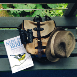 My suggestions for best birding gear for spring.