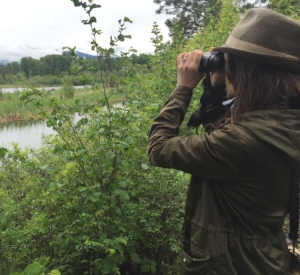 Seattle Audubon's annual Birdathon fundraiser is an excuse to cover some serious travel ground across the state, trying to count as many species as we can see in 24 hours.