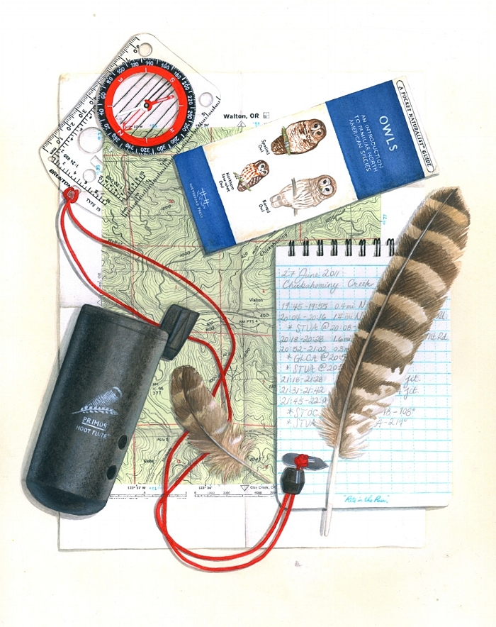 Spotted owl survey kit; artwork by Laurel Mundy.