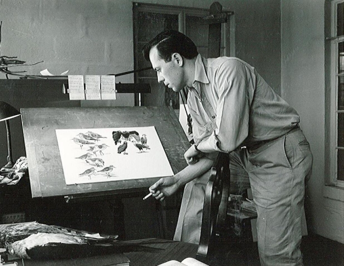 Donald Eckelberry in his studio, early 1950s. Photo courtesy Woodson Art Museum.