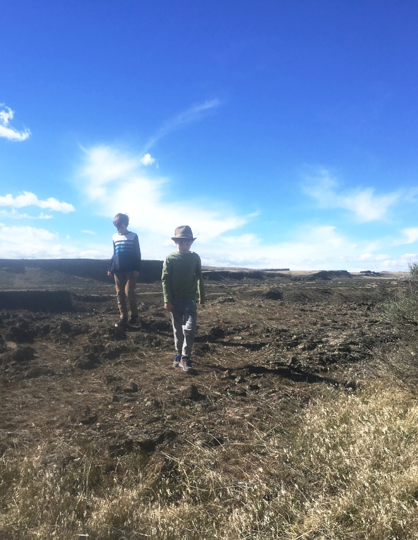 My son (in the foreground) and his pal at the Columbia National Wildlife Refuge outside of Othello, WA. From this spot we heard, then saw Lesser Sandhill Cranes circling high above us.