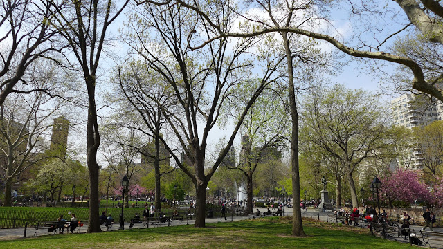 Washington Square Park in early spring. Photo by Georgia Silvera Seamans.