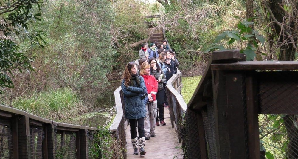 The group walking through the wetlands at the Vicente Lopez site, Buenos Aires, Argentina, July 2018.