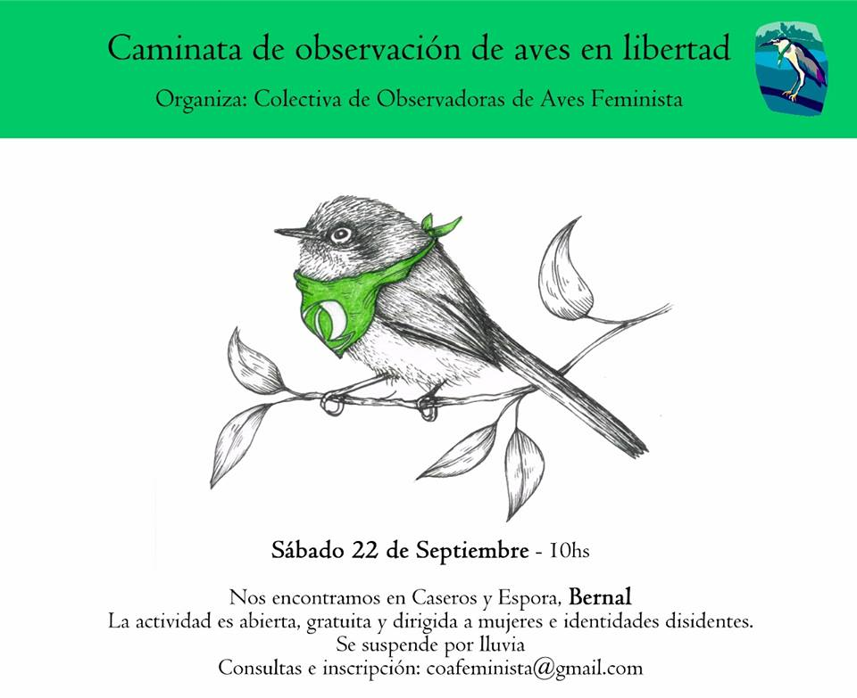 Flyer for the second bird walk of the Colectiva Observadores de Aves Feminista, the bird wearing the abortion rights green bandanna. Design by Josefina Wolf.