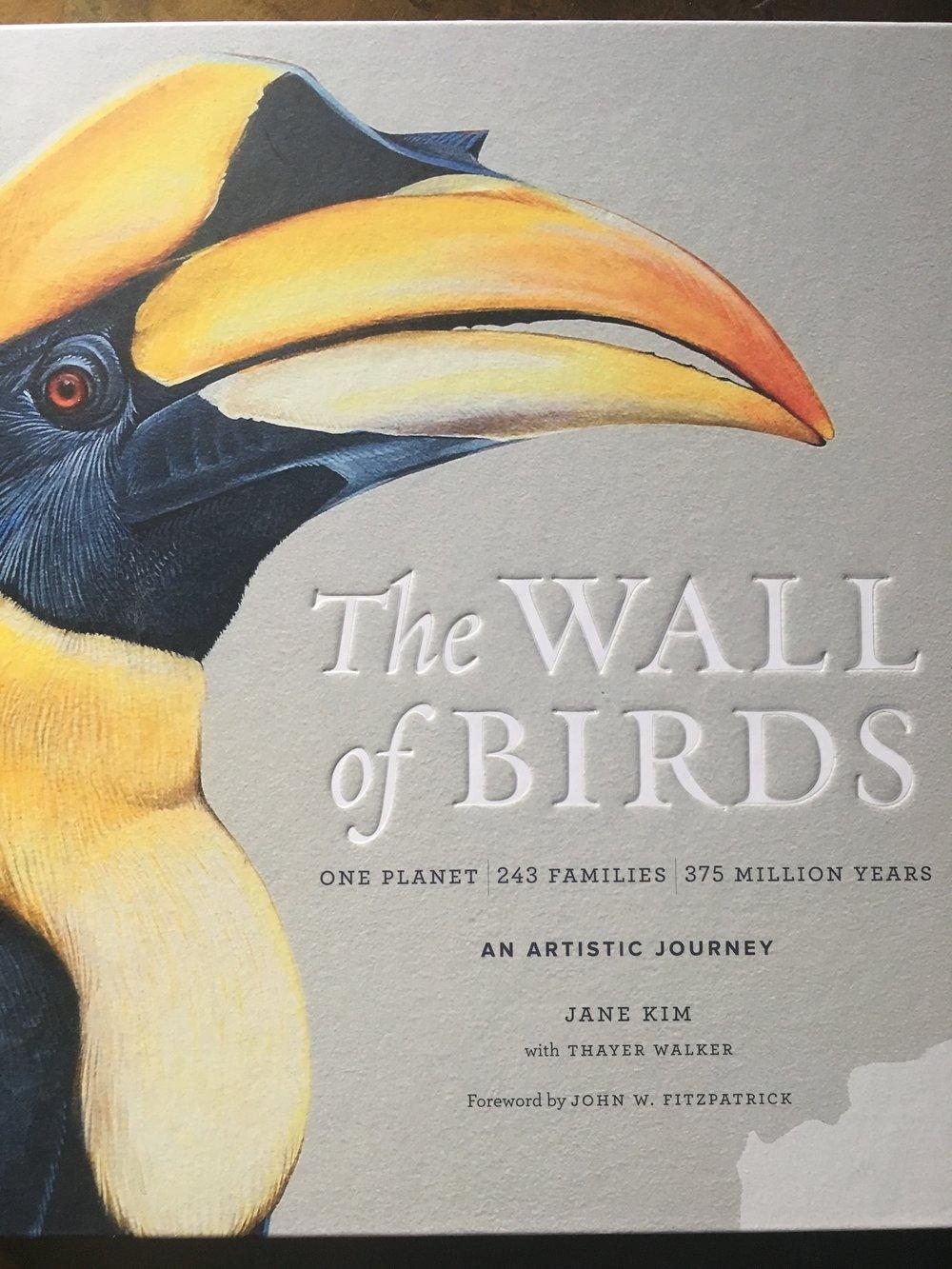 Wall of Birds.jpg