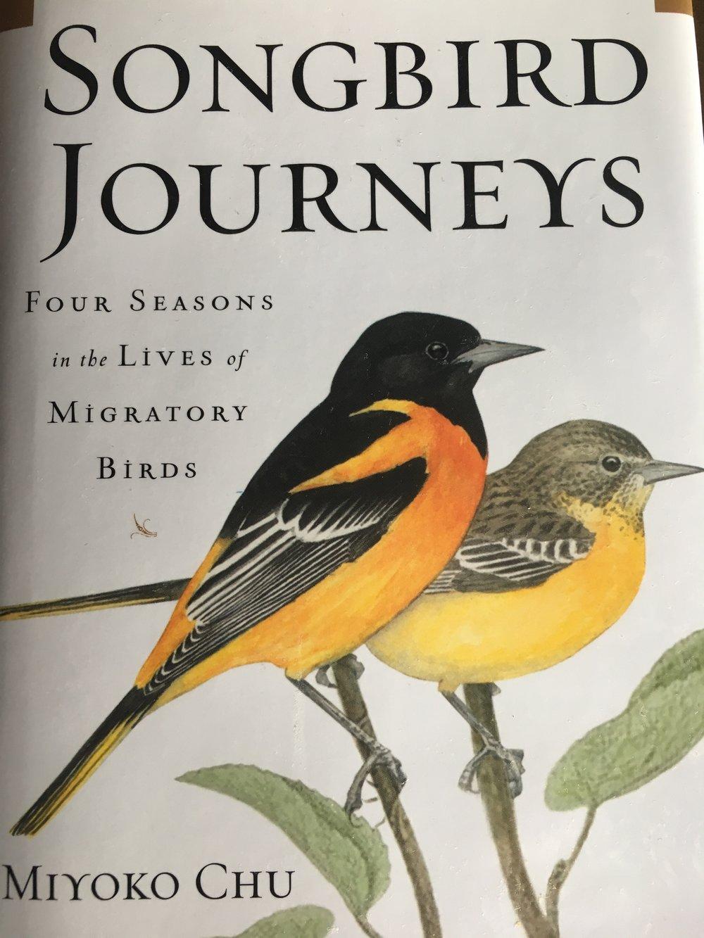 Songbird Journeys.jpg
