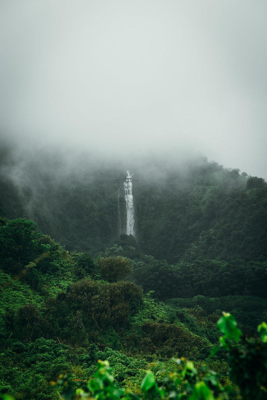 Hawaii-4992.jpg