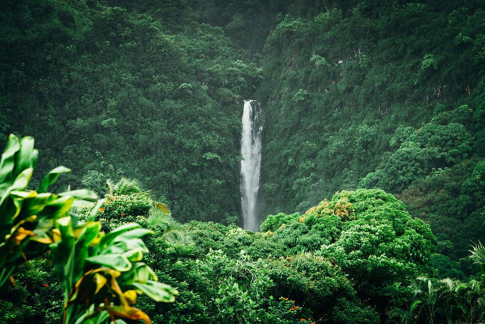 Hawaii-4987.jpg