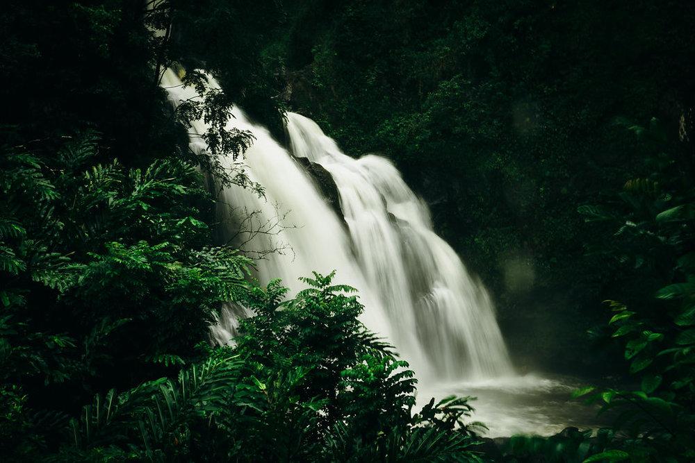 Hawaii-5004.jpg