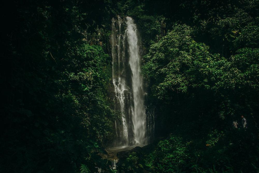Hawaii-5144.jpg