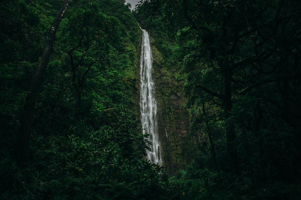 Hawaii-5196.jpg