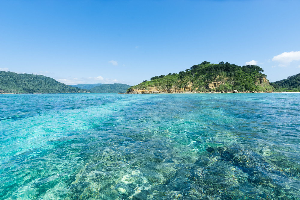 Pristine Coral Reefs