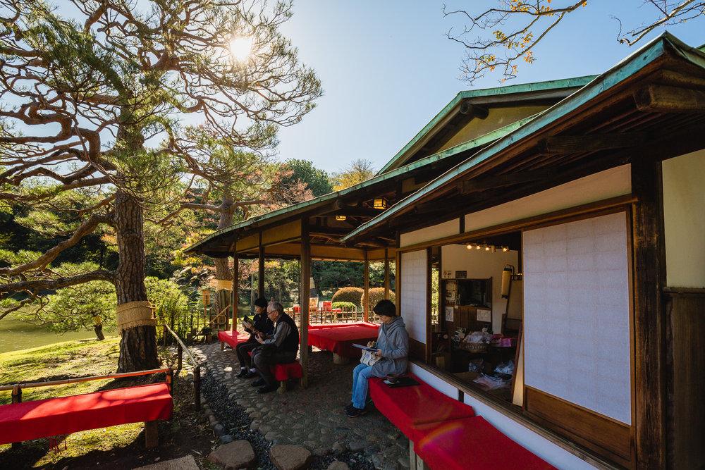 Japanese Teahouse, Rikugien