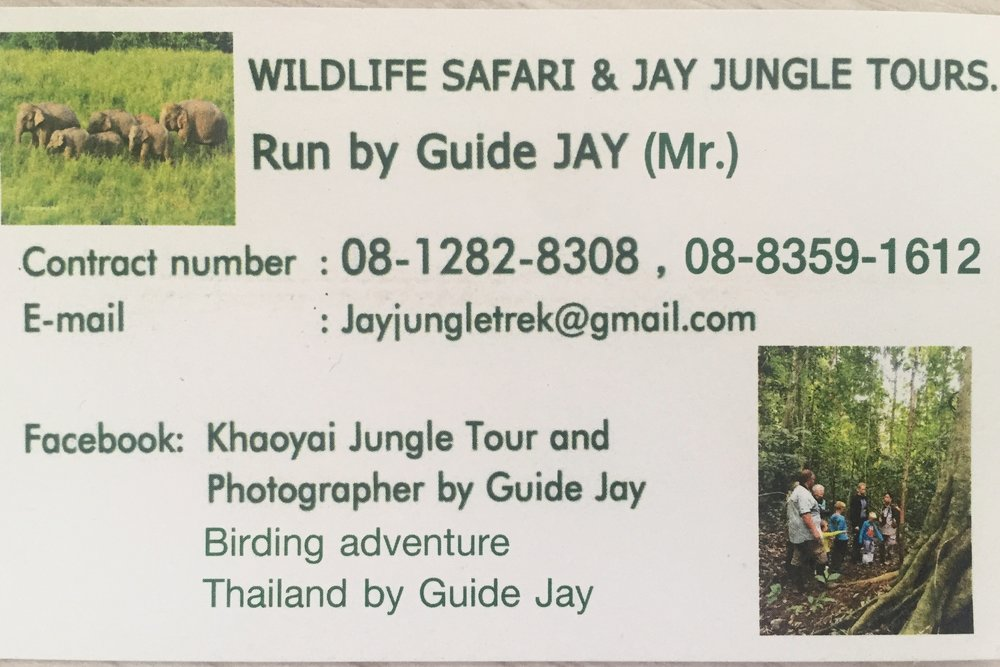 Highly Recommended Tour Guide for Khao Yai National Park