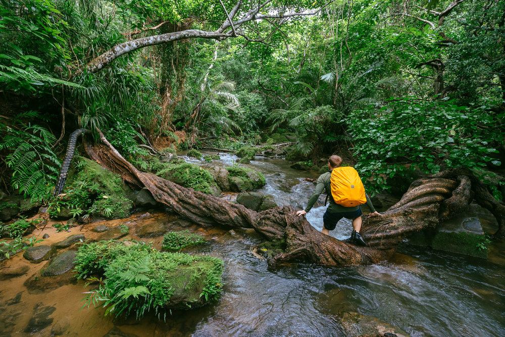 Stream Trekking through Iriomote Island, Japan.