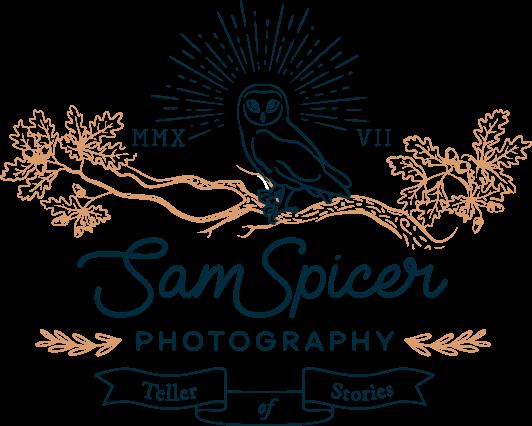 ssp-logo-black-orange-532w-426h.png