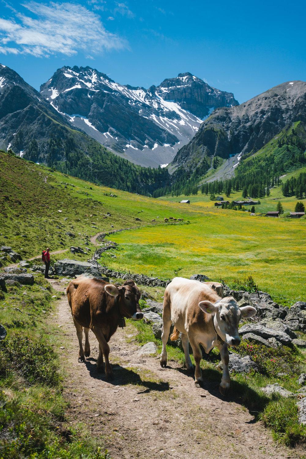 Sertig Dörfli, Switzerland