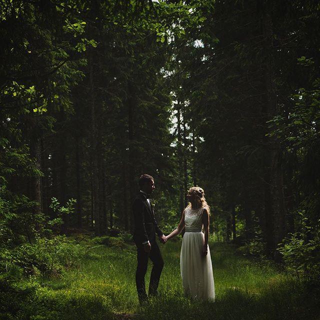 #throwback till när jag fotade ett midsommarbröllop i Borås och det inte ens var en tillstymmelse till regn utan det var strålande sol _hela_ dagen! ☀️ X-Pro2 med xf 16-55 2,8.  #Bröllop2017 #bröllopsdag #bröllopsfoto #bröllopsinspiration #bröllopsfotograf #bröllopsfotografering #bröllopsinspo #bröllop2018  #bröllopsklänning #borås #fujifilmxpro2 #fujifilmx #fujifilmnordic #fujifilm_xseries #fujilove #fujifeed #weddingportrait #weddingportraits #junebugweddings #portraitmood #portraits_ig #natureportrait #portraitperfection #fotografmaxnorin #wayupnorth #nordiskabrollop @fujifilmnordic @fujifilm_xseries @fujifilmglobal @_fujilove_