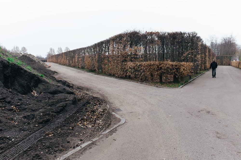 Rosengård-006-4582.jpg